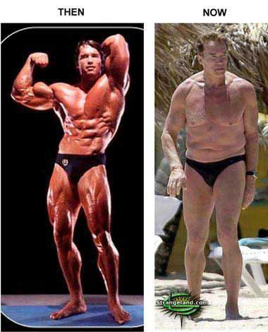 arnold schwarzenegger now and before. Arnold Schwarzenegger,61 - now