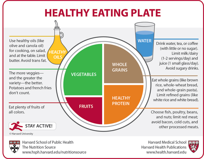 Out With The Food Pyramid Bring In The Food Plate